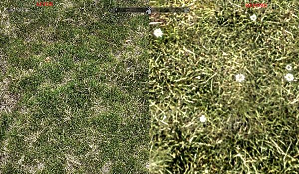 detalle de la hierba de skyrim, donde podemos apreciar la textura predefinida, frente a la nueva textura Skyrim Realistic Overhaul.